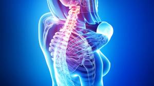 les douleurs de dos et consultation medicale
