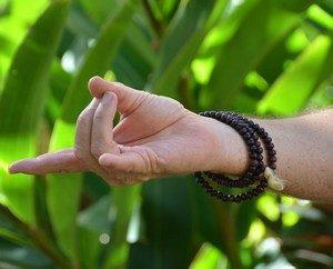 le pranayama ou la respiration et le contrôle des énergies